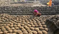 """牛粪在印度网上热销:节日采购当""""礼包"""""""