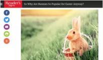 四月零售日历:做好当季营销,只需把握好六个关键词