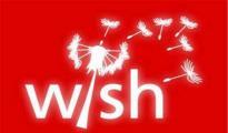 Wish曝去年GMV增幅100% 今年还有这些大变化
