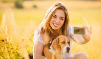 美国宠物保健市场观察,跨境电商卖家机会在哪?